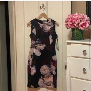 Calvin Klein Floral Scuba Sheath